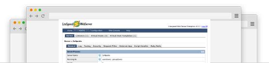 MozDomains LiteSpeed Webserver